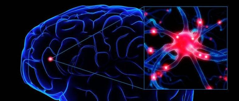 Descubra os sintomas ocultos da Epilepsia